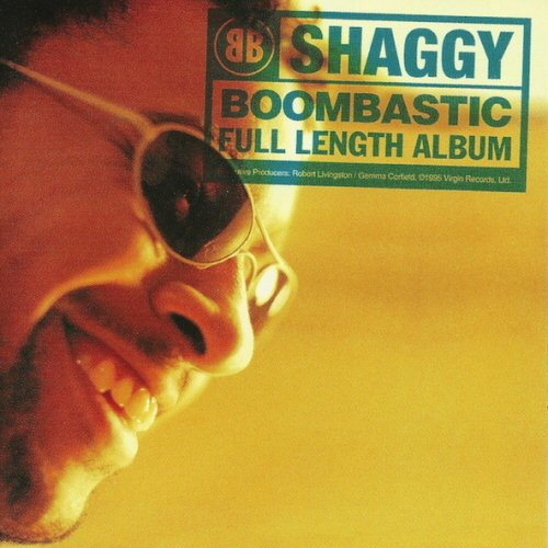 Shaggy Boombastic Records, LPs, Vinyl and CDs - MusicStack